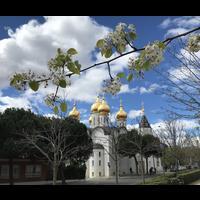 Кафедральный собор в честь святой равноапостольной Марии Магдалины